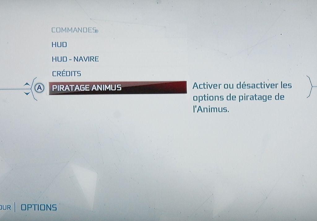 pivots-animus-002