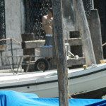 Travaux publique à Venise